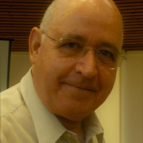 Finkelstein Yoram